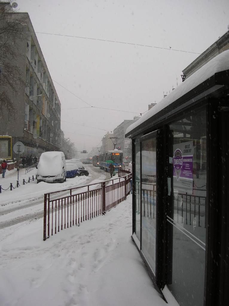Sznur tramwajów oczekujących na przepuszczenie