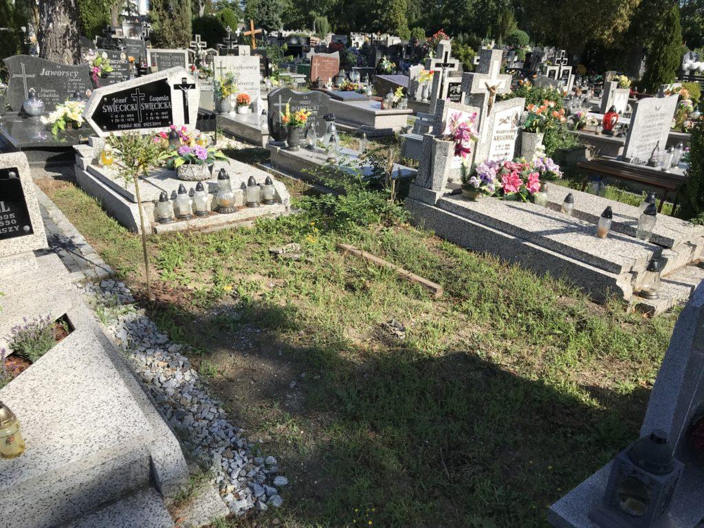 nie ma już grobu wujka Janasa w Brzegu, przeniesiono go do Lipek; fot. MR